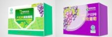 葡萄包装(平面图)图片
