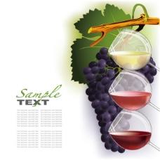 葡萄和葡萄酒矢量素材