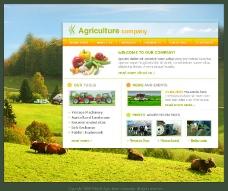 欧美经典网站模板图片