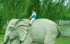 象背上的男孩图片