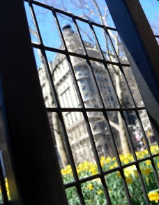 铁窗外的建筑图片