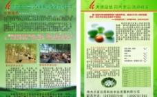 农业公司宣传单图片