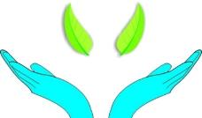 手托树叶图片图片