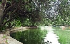 鲁迅公园湖景图片