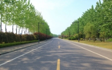 合肥市翡翠湖环湖大道图片