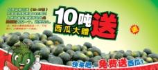 水果背景 水果海报图片