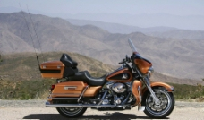 哈雷Harley图片