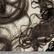 头发笔刷图片