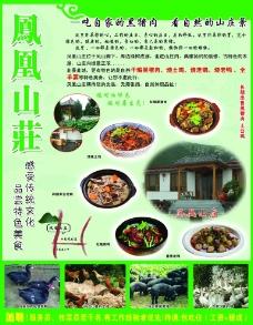 凤凰山庄宣传单页图片
