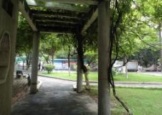 校园通道图片