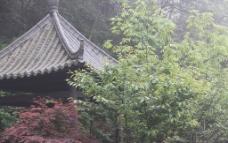安吉风景区图片