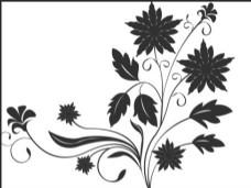 黑白花纹ps笔刷