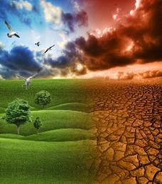 干旱与绿色图片