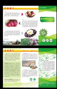 宏日农业之薯类农产品简介折页图片