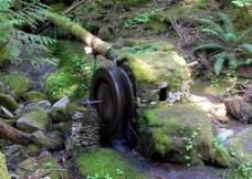 自然环境水车图片