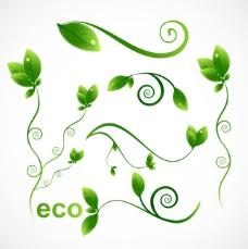 矢量素材生态绿叶