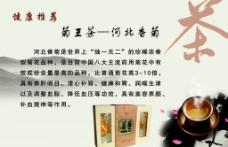 菊王茶 河北香菊图片