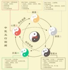 中医五行图图片