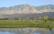 青海黄河湿地图片