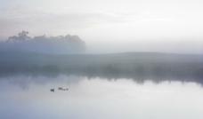 清晨湖面图片