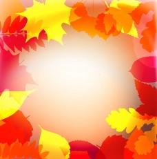 枫叶秋天背景图片