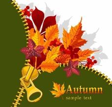 拉链枫叶秋天背景图片