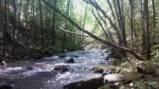 山林清水图图片