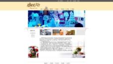 品牌网页模板图片