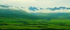 美丽的大草原图片