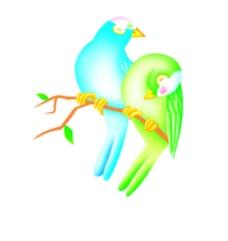 漂亮鸟图片