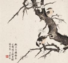 梅花小禽图图片