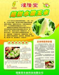 玉米宣传彩页图片
