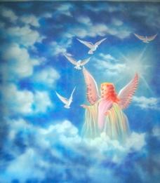 天使鸽子图片