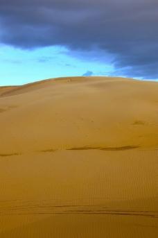 金色的沙丘图片