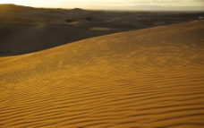 美丽的沙漠波纹图片