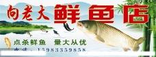 鲜鱼店图片