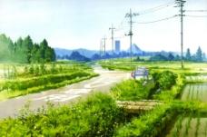 风景 田野图片