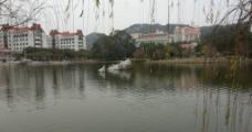 大学湖畔图片