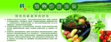 科普蔬菜种植知识展板图片