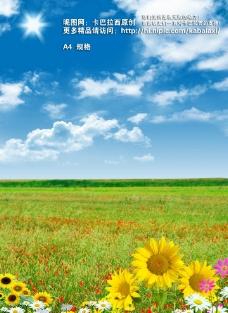 蓝天草地图片