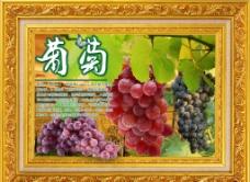 水果风景之葡萄图片