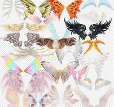 各种翅膀psd源文件图片