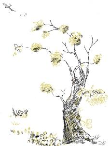 动漫树木速写_