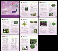 茄子无公害栽培技术 小册子图片