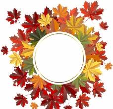秋天树叶花环背景图片