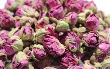 法兰西玫瑰花蕾