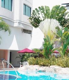 超五星级 酒店游泳池图片