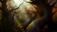 魔幻森林图片