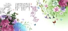 蝶戀花圖片