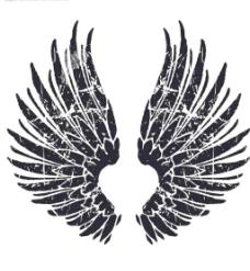 翅膀2图片